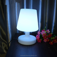 CE&RoHS acrylic waterproof plastic led lamps led table lights rechargeable led lamps indoor