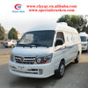 4X2 Gasoline powerful mini refrigerated van for sale