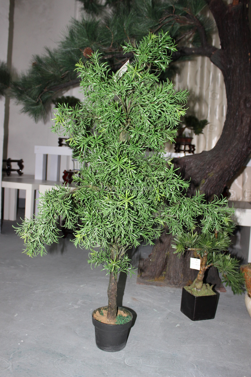 Apanese bonsai types of large outdoor artificial trees for Different kinds of bonsai trees