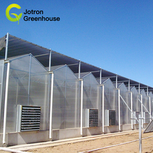 The cheapest factory polycarbonate greenhouse