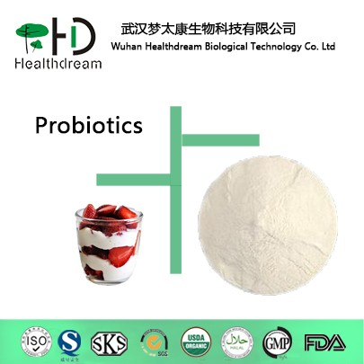 Probiotics powder Lactobacillus plantarum , Lactobacillus plantarum powder for Digestive health