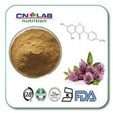 natural dried red Clover Extract2.5%/8%20%40% HPLC for women's health from China