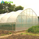 Agricultural Tunnel Greenhouses Farming Equipment For sale