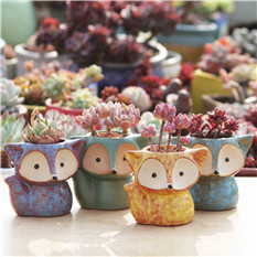 indoor decorative cactus garden  ceramic flower plant pot planters