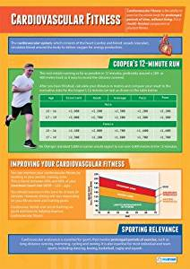 "Cardiovascular Fitness | Physical Education & Fitness Chart in high gloss paper (33"" x 23.5"") SHIPS 5-10 DAYS"