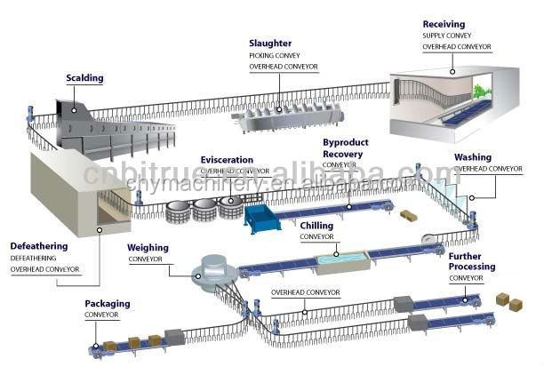 Swell Chicken Slaughtering Equipment Line For Poultry Slaughterhouse Killing Buy Chicken Slaughtering Equipment Line For Poultry Slaughterhouse Download Free Architecture Designs Rallybritishbridgeorg