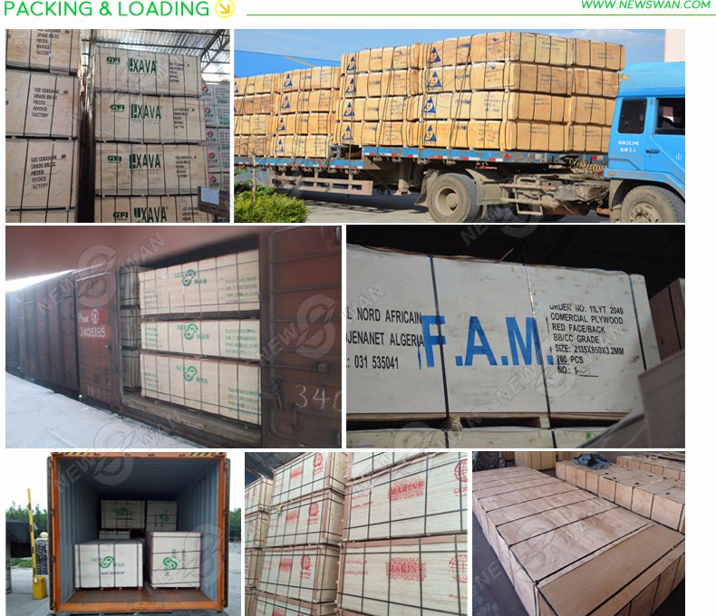 18 mm Commercial Plywood / Plywood Sheet