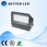 Full Moon Waterproof 90W Outdoor Wall Mounted SMD LED Wall projection Lamp light with 5 years warranty LQ-WP03-90W
