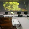 Holographic Rear Projection Transparent Screen Film For beam projector