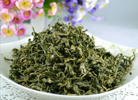 Blood Pressure Herb Tea Apocynum venetum tea