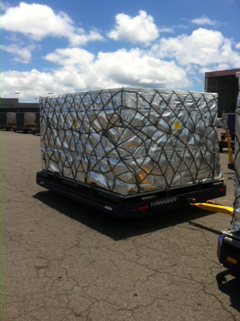 Fireproof Heat Resistant Cargo Delivery Pallet Cover With