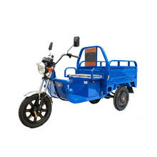 Electric CargoTrike Adult Electric Tricycles the lithium battery and the charger!