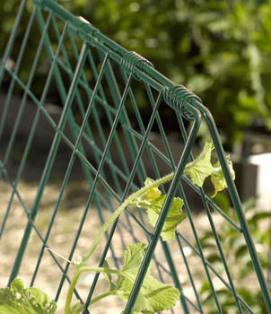 Folding Pea Trellis Fence Buy Folding Pea Trellis