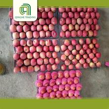 wholesale new crop fresh red bulk organic fresh fuji apple
