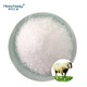 Animal feeding stuff urea used as ruminant protein supplement feed concentrated poultry feed