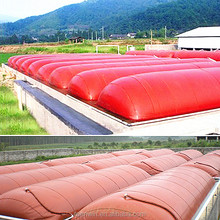 Teenwin Chinese popular medium biogas plant for generating
