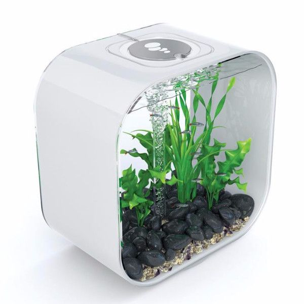 Modern clear cylinder acrylic aquarium ornamental fish tank