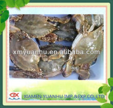 Good Quality Soft Shell Frozen Crab for Sale