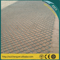 Guangzhou factory free sample pvc coated chain link fencing /chain link mesh/chainlink wire mesh