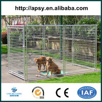 PVC or galvanized welded dog kennel enclosure