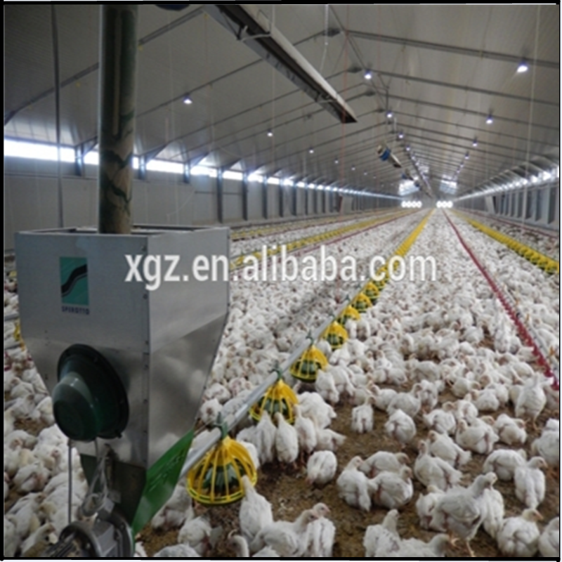 Steel structure farm broiler poultry house shed construction design chicken house