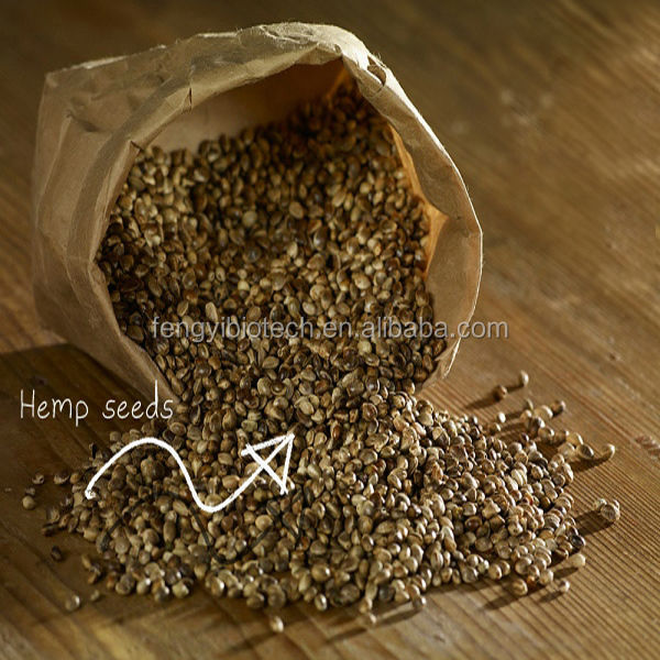 Organic Agricultural Hemp Oil Seeds
