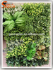 2016 new design fake artificial grass plant wall decor moss wall for Home Decoration
