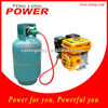 Lastest Design Hot Sale Duel Fuel LPG Engine for India Market