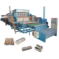 Long lifetime paper egg tray thermoforming machine
