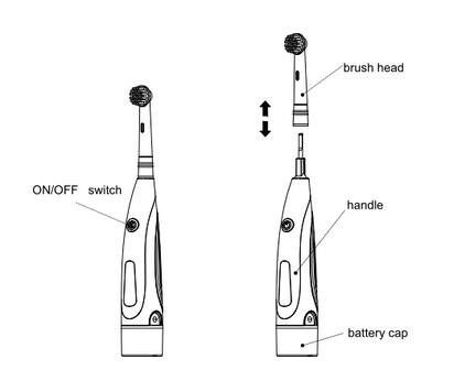 CE/ROHS/FDA electric tooth brush compatible braun
