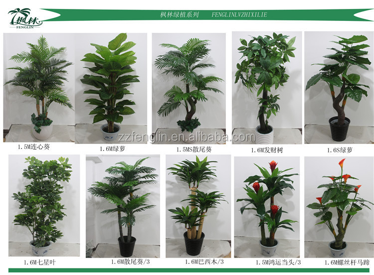 Two Heads Silk Cheap Wholesale Artificial Money Tree Plant For ...