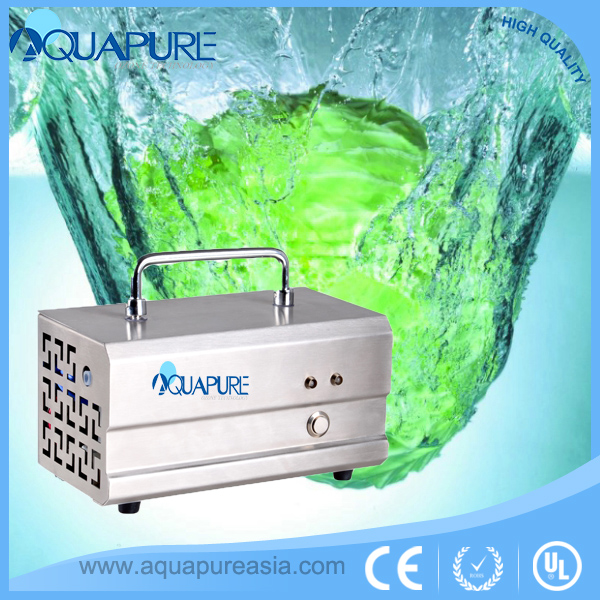 500mg ozone generator for water ss housing potable water tank