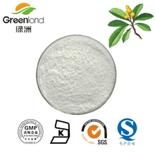 Greenland hot selling Loquat Leaves Extract ursolic acid