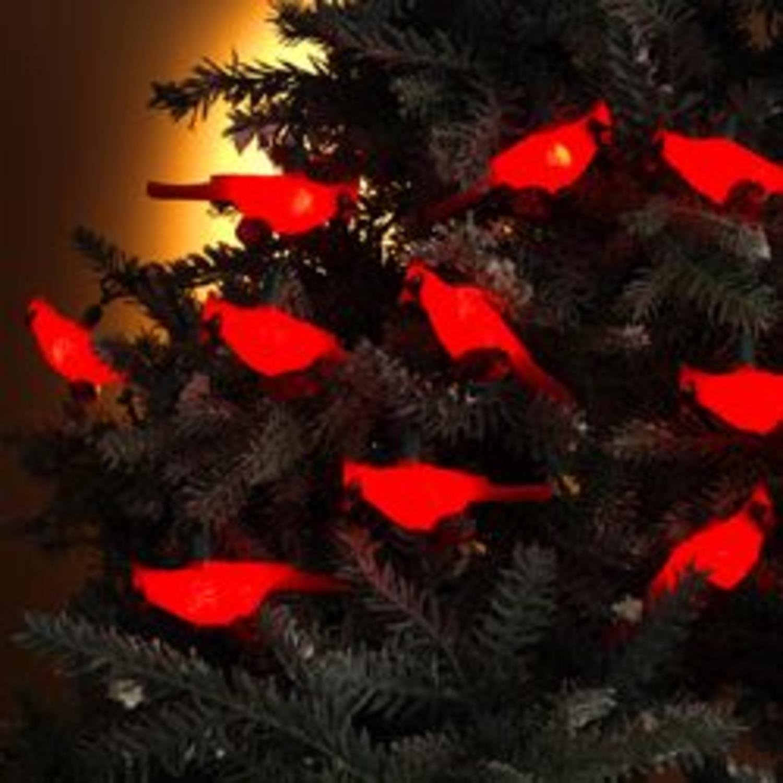 Buy Set of 10 Festive Red Cardinal Bird Novelty Christmas Lights ...