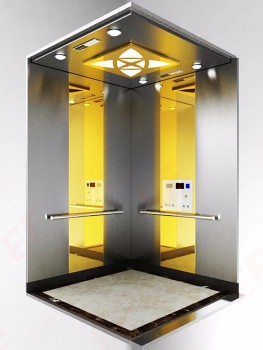 Residential indoor elevator guide rail 450kg pit flood for Indoor elevator