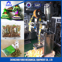 2016 Fuuri Popular automatic ice cube packing machine/automatic packing machine