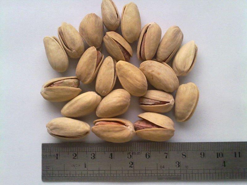 Dryfruit Pista In Shell Long Shaped
