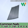 China factory low cheap price 1kg bag or 1kg box, 30mm 40mm 50mm 60mm 70mm 80mm 90mm 100mm common iron wire nails for sale