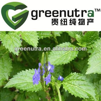 Herba Verbenae Herb Extract