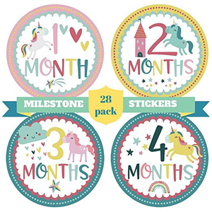 Monthly Baby Stickers, Baby Month Stickers Boy Tribal Arrows Chevron Book Keepsake Shower Gift