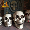 /product-detail/wholesale-customized-non-toxic-latex-skull-head-props-halloween-party-prop-haunted-house-horror-prop-60698048139.html