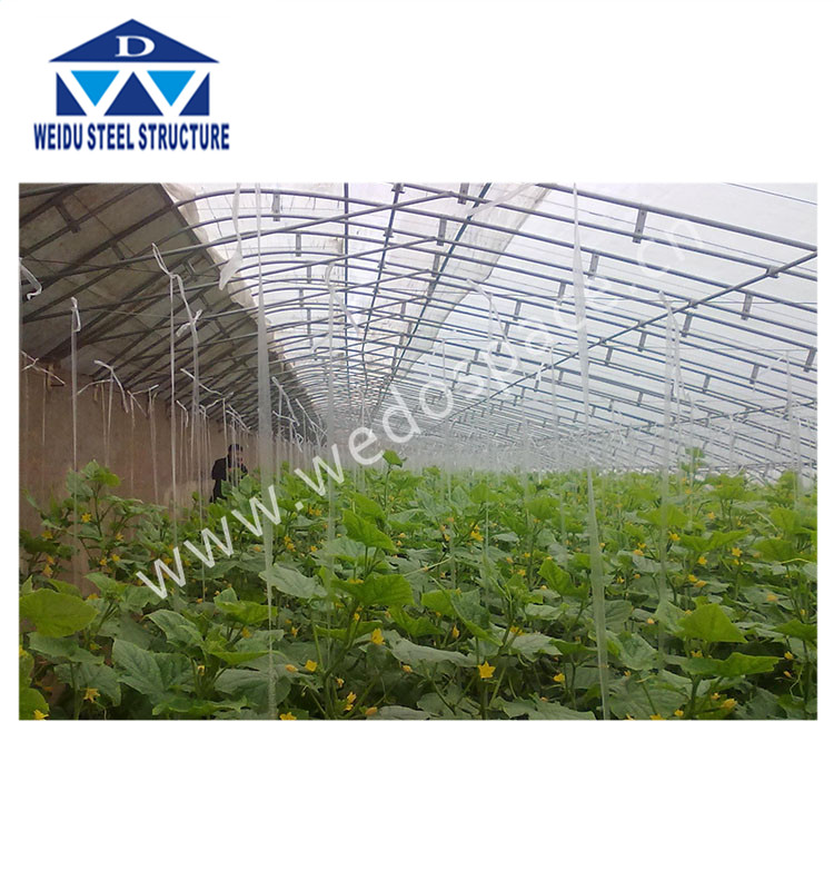 Greenhouse price cheap greenhouse commercial greenhouse for sale