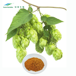 Natural Beer Hops Extract Hops Flower Extract powder