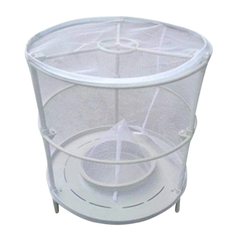 Vinjeely Detachable Red Drosophila Fly Trap Device Top Catcher Fly Wasp Insect Trapping