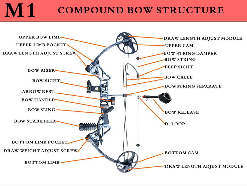 perfect line compound bow manual