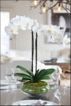 2014 sj af045 wholesale artificial orchid flower singapore orchid 2014 sj af045 wholesale artificial orchid flower singapore orchid fake plastic silk orchid flower for artificial mightylinksfo