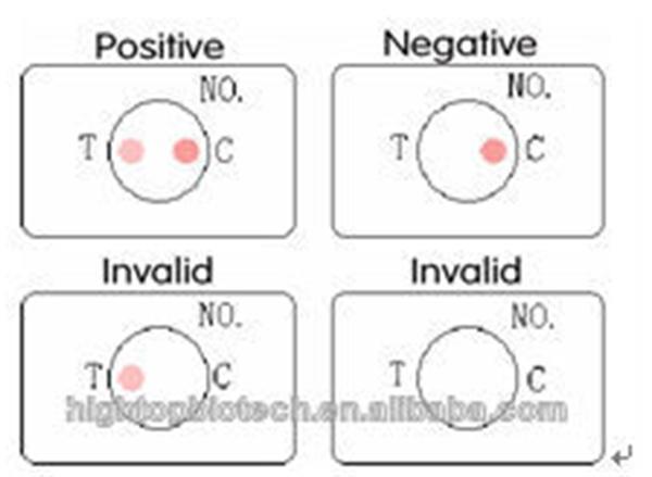 Dot(flow Through) H Pylori Antibody Igg/igm Rapid Test Kit - Buy H Pylori  Ab Rapid Test,H pylori Test,H p Test Product on Alibaba com