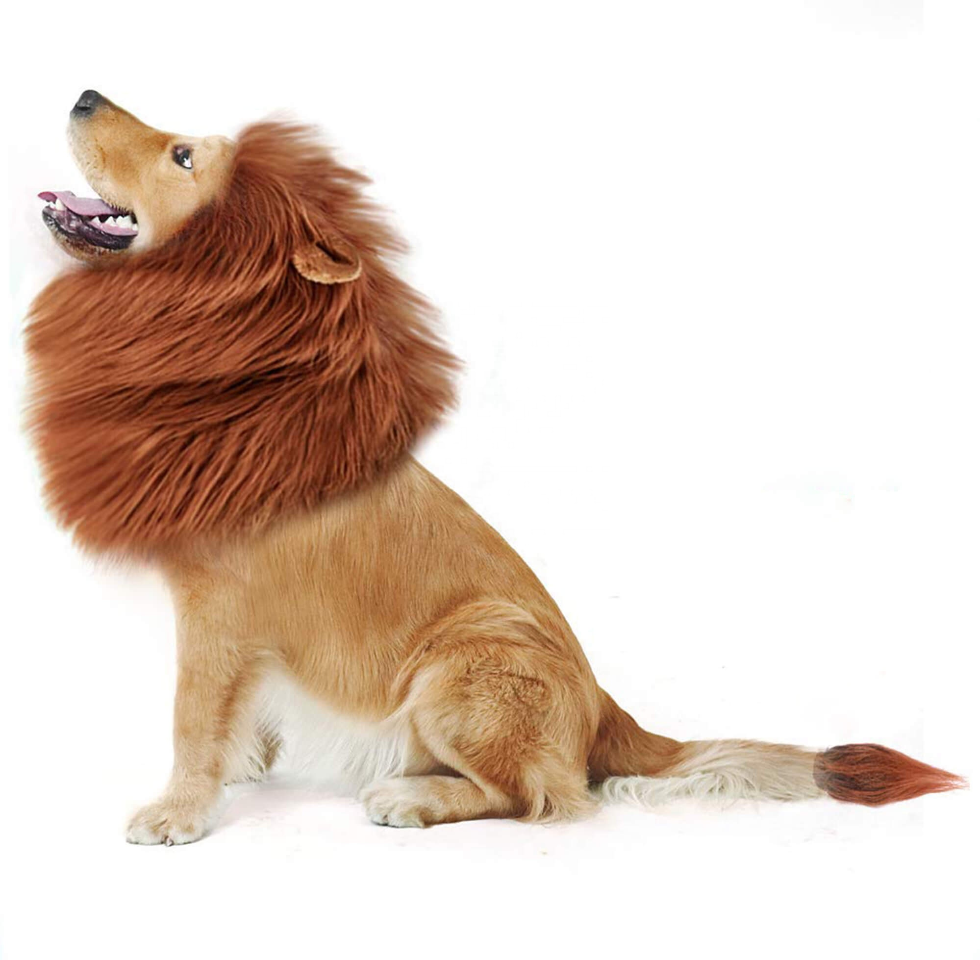 Lion Mane for Dog Costume with Gift and Lion Wig for Dog Large Clothes  Dresses Pet Festival Party Fancy Dog 8ff4c9bb7