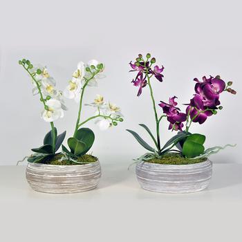 Cement Pot White Orchid Artificial Flowers Arrangement