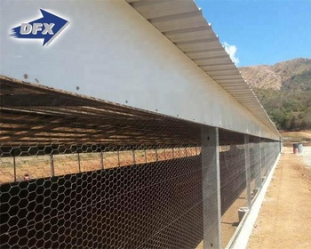 Low Cost Commercial Chicken Poultry Farm House Building